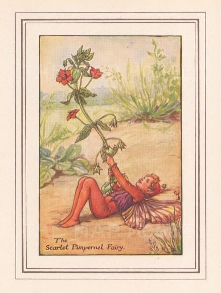 "Barker: Scarlet Pimpernel Fairy. c1925. An original vintage chromolithograph. 3"" x 4"". [DECp1504]"