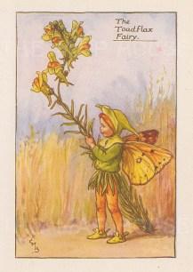 "Barker: Toadflax Fairy. c1925. An original vintage chromolithograph. 3"" x 4"". [DECp1894]"