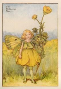 "Barker: Buttercup Fairy. c1925. An original vintage chromolithograph. 3"" x 4"". [DECp1898]"