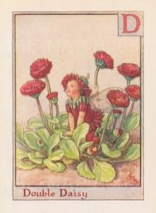 "Barker: Double Daisy Fairy. c1934. An original vintage chromolithograph. 3"" x 4"". [DECp1963]"
