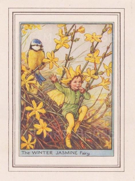 "Barker: Winter Jasmine Fairy. 1927. An original vintage chromolithograph. 3"" x 4"". [DECp2216]"