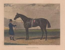 "Herring: Chorister. c1850. A hand coloured original antique steel engraving. 7"" x 5"". [NATHISp6963]"
