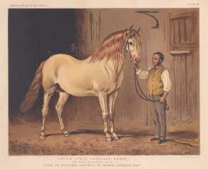 State Carriage horse of Queen Victoria.