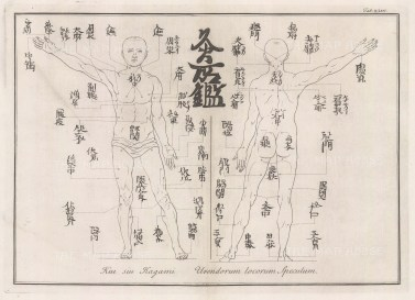 Kui siu Kagami Urendorum locorum Speculum. Showing more than 60 acupoints for the treatment of a variety of ailments