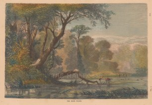 "Collins: River Rioni, Georgia. c1870. A hand coloured original antique wood engraving. 10"" x 6"". [RUSp666]"