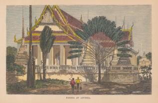 Ayutthaya: View of Wat Phananchoeng (Temple of the seated Buddha)