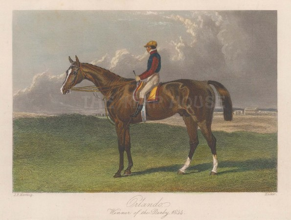 Winner of the Derby with jockey Nat Flatman. A scandal of the day, the race was initially won by a ringer Maccabeus posing as Running Rein.