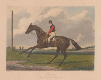 Winner of the Oaks 1843 with jockey Frank Butler.