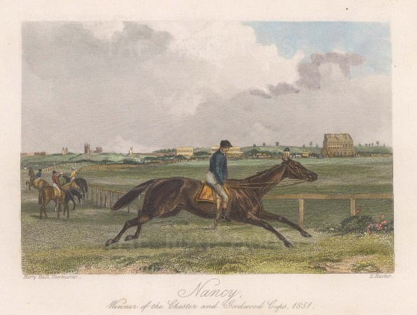 Winner of the Chester and Goodwood Cups 1851.