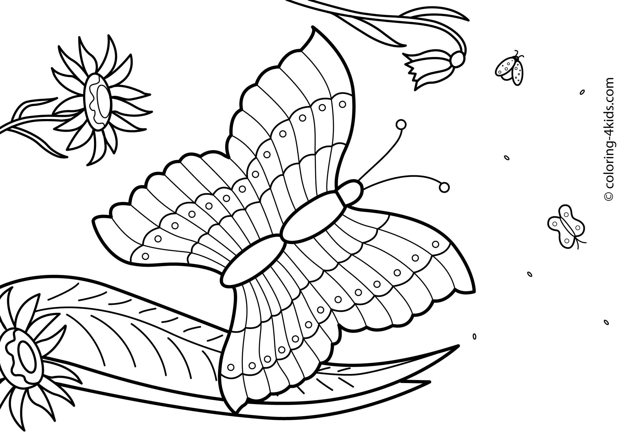 27 Summer Season Coloring Pages Part 2