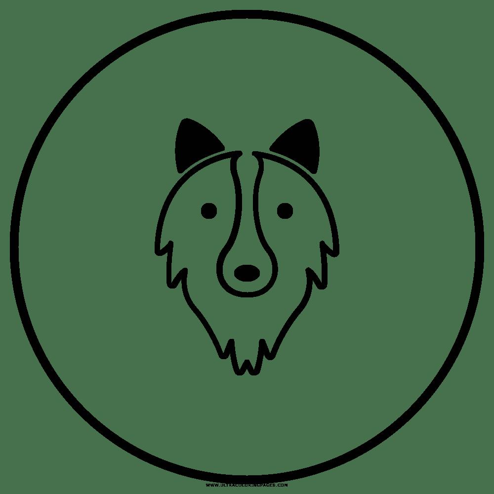 Husky Coloring Page - Bilscreen