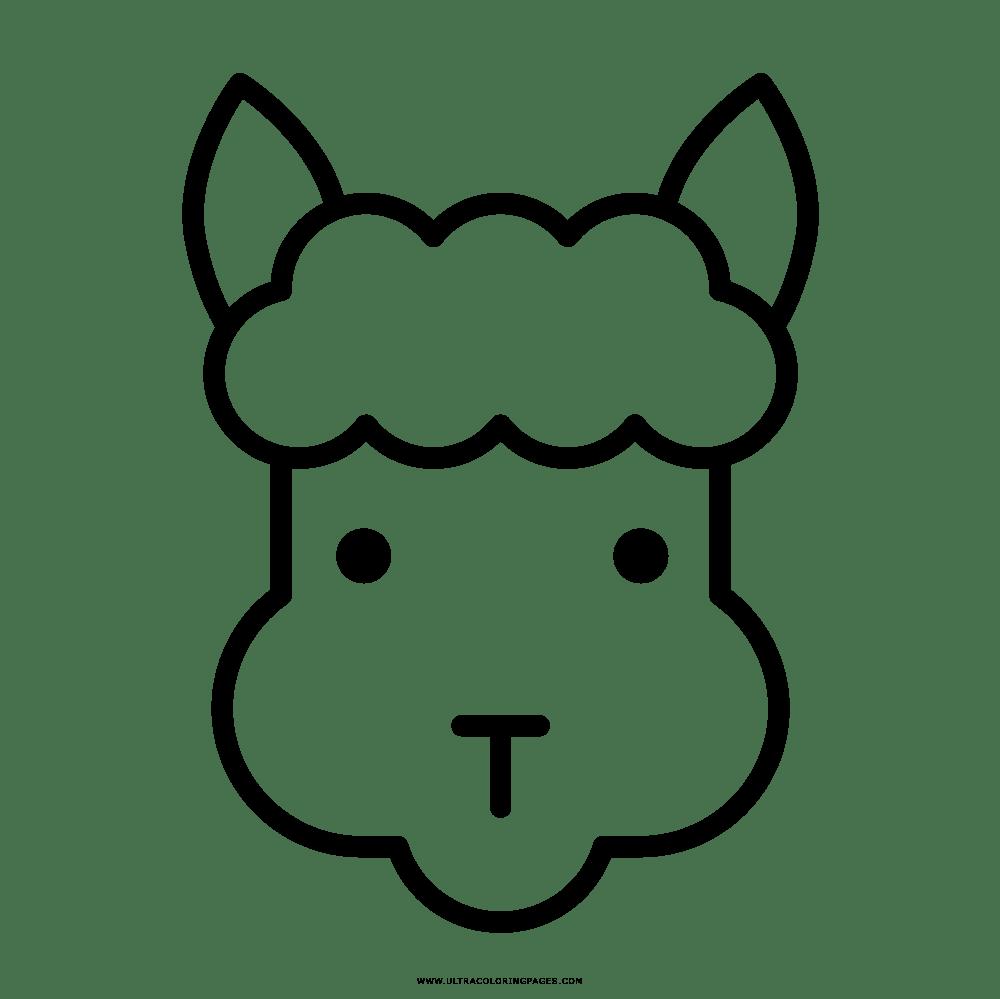Alpaka Ausmalbild Kinder Ausmalbilder