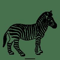 Zebra Da Colorare Per Bambini Disegno Zebra Draw A