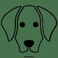 Labrador Disegni Da Colorare