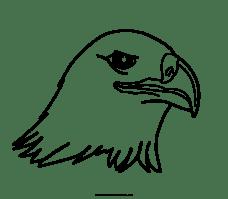 Dibujo De águila Para Colorear   Ultra Coloring Pages