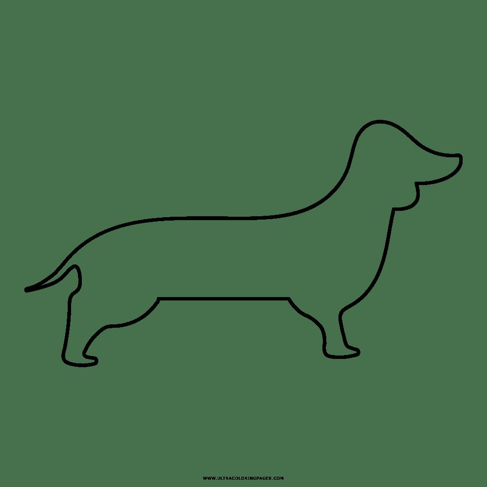 Ausmalbilder Hunde Dackel - Kostenlos zum Ausdrucken