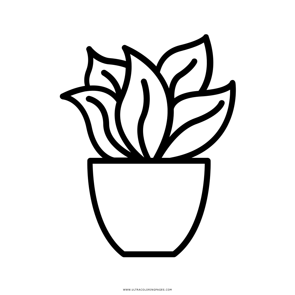 Plant Coloring Page Ultra Coloring Pages