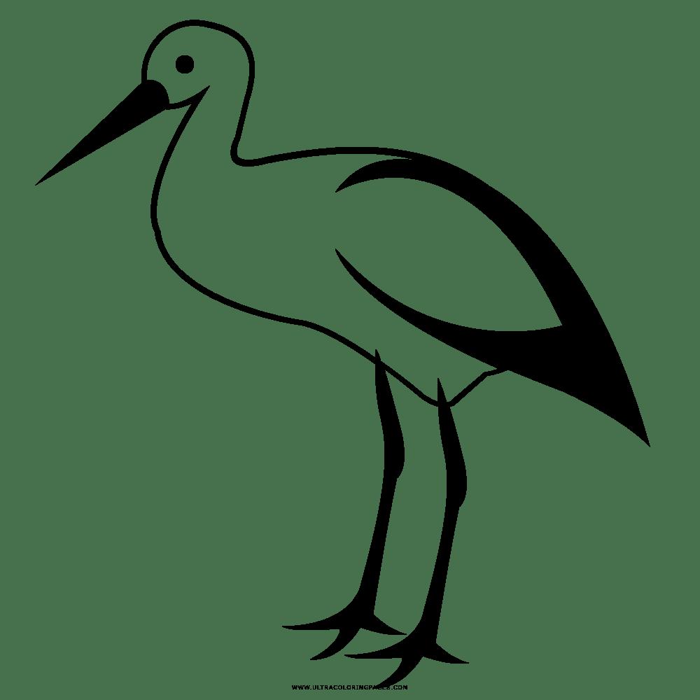 27 Coole Malvorlage Storch Kostenlos Beste Malvorlagen