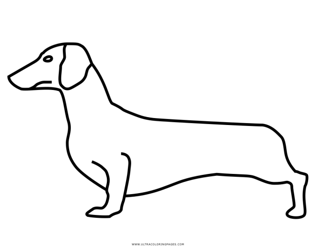 Dachshund Coloring Page - Ultra Coloring Pages