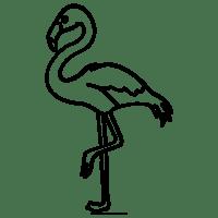 Flamingo Ausmalbilder   Ultra Coloring Pages