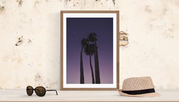 Palm trees purple sunset photography canvas