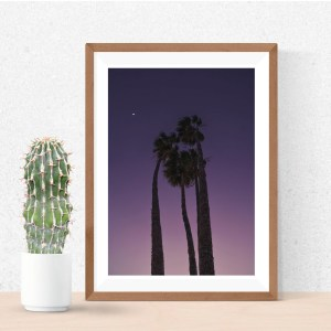 Palm trees purple sunset photography canvas