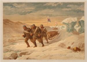 Moss: , Arctic c.1880. An original antique chromo-lithograph. 12 x 9 inches. [ARTp452]