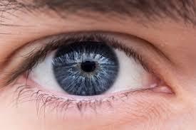 Human eye chapter 11 class 10th
