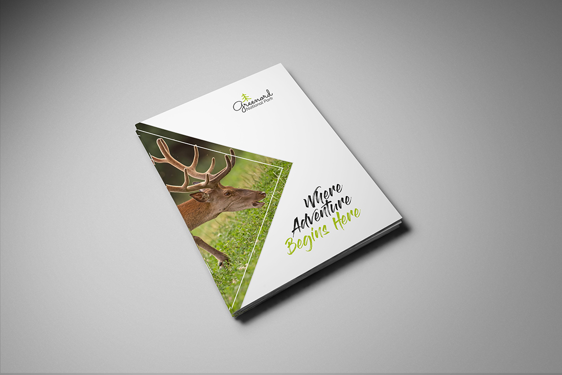 Stapled A5 Brochure Printing