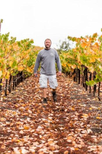 Rich in the Vineyard