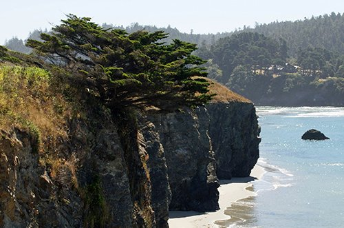 Mendocino and northern California Wine tasting Deals