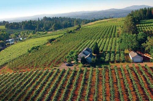 Sierra Foothills Wine Tasting Deals