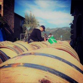 Checking Barrels