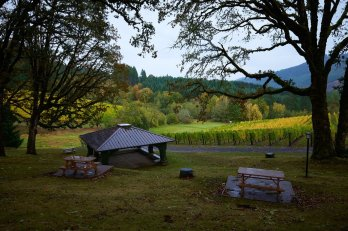ridall_winery