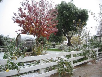 briar_rose_winery