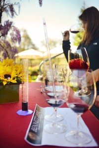 Bennett Lane private wine blending experience developing taste