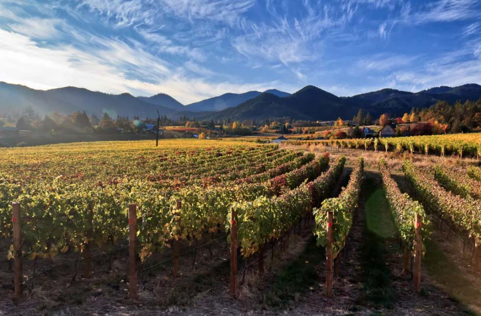 Top Oregon Tasting Rooms