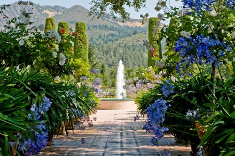 Landmark Vineyard Fountain
