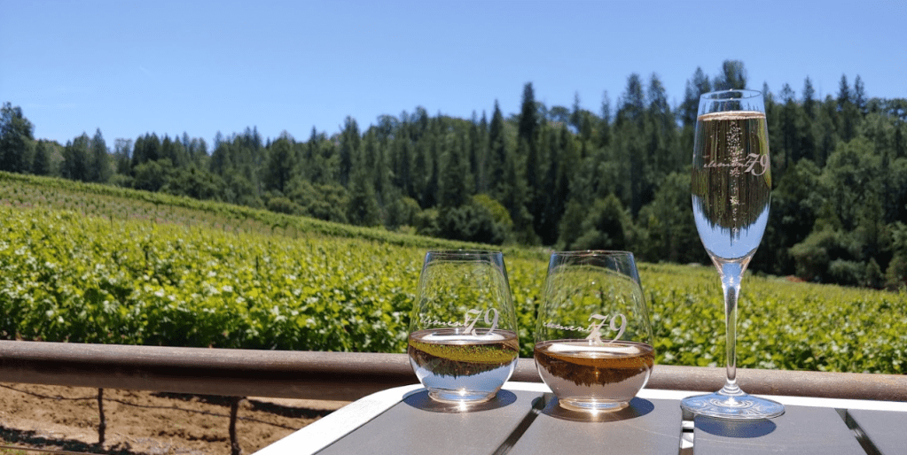 Private tasting at Element 79 Vineyards