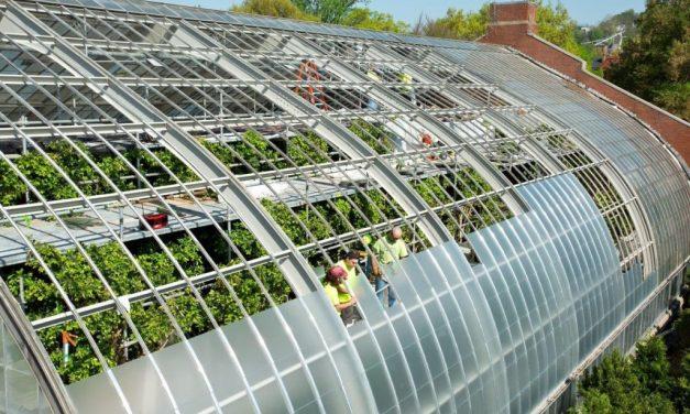 Bird-friendly glass reviving popular Tropical Rainforest exhibit at National Aviary