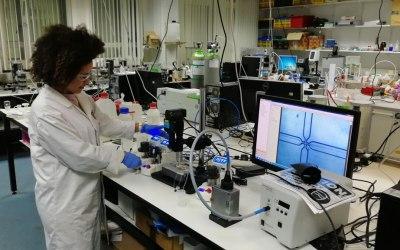 Cambridge researchers developing self-healing concrete