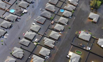 New publication addresses the urgent need for community resilience in the face of repeated major disasters