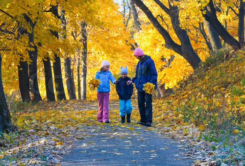 Valuing a walk in the park: Children with ADHD who take a 20-minute walk through a park are likely to exhibit significantly better concentration than by doing the same in a downtown area. Nature has major implications for the way we treat ADHD. – Taylor & Kuo, 2009. Family on Nature Walk, Courtesy of Colourbox.com