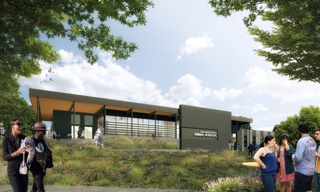 Denver Zoo breaks ground on new animal hospital