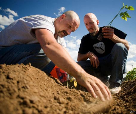 Inmates in this Utah jail aren't digging an escape tunnel. They're learning to garden. Credit: Inside America, Jail