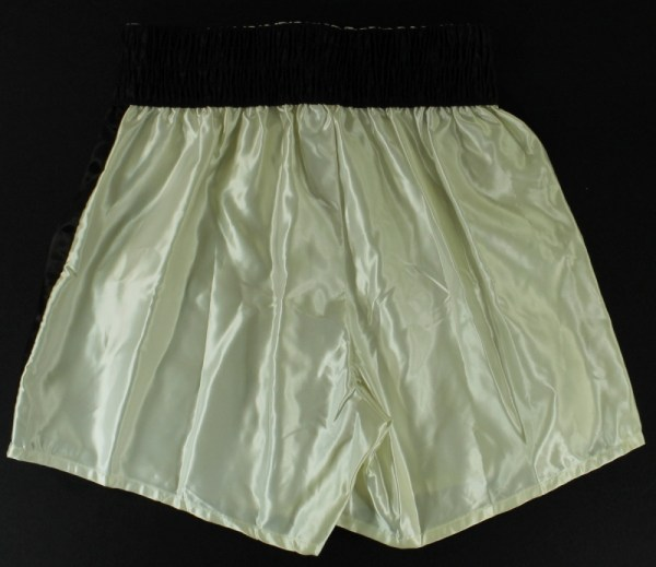 Vintage Everlast Boxing Trunks