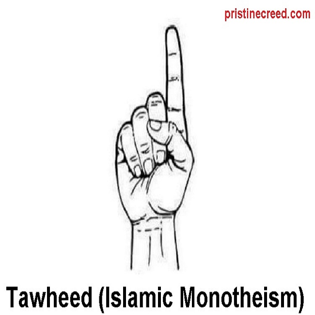 one finger tawheed