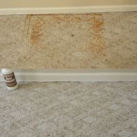 How To Remove A Rust Stain From Carpet
