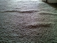 Why do my carpets have wrinkles?