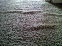 Why do my carpets have wrinkles? - Pristine Tile & Carpet ...